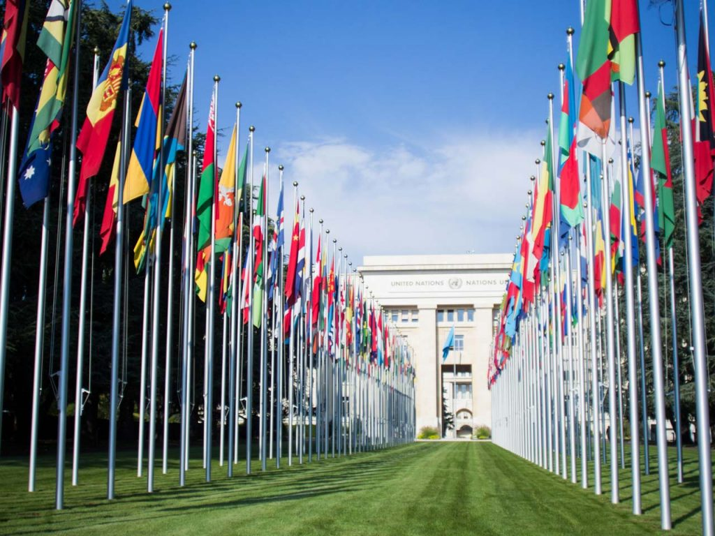 Diplomatic Moving, UN, and International flags
